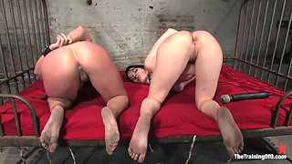 The Training of Dana DeArmond, Day Three - TheTrainingofO