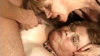 Vulva die alte wildsau