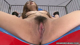 Tied up Japanese chick Hibiki Otsuki gets her hairy closeup pussy toyed