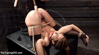 Big Ass Double Penetration Squirting Bondage Slave, Savannah Fox - TheTrainingofO