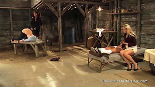 Slaves Homecoming: Mistress Choose Only Natural Busty Teens